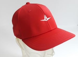ALL-STAR FLEX FIT LOGO HAT