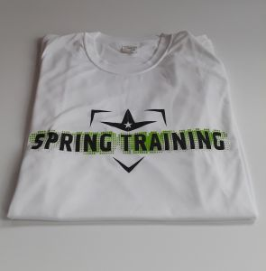 ALL-STAR SPRING TRAINING 2019 T-SHIRT